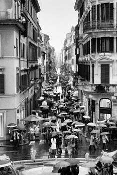 Drops of Rain in Rome  by Steven  Taylor
