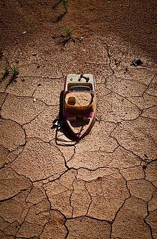 Drought by Swift Family