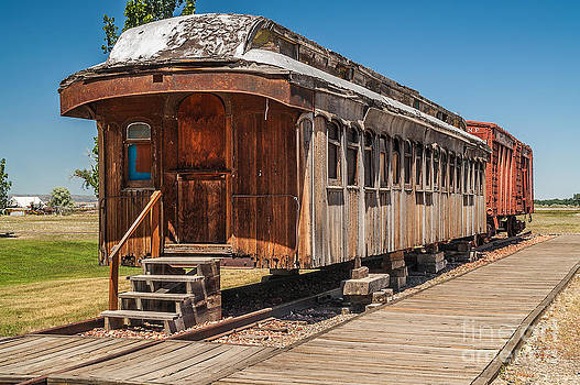 Drover and Cattle Cars by Sue Smith