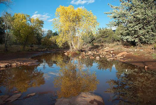 Dry Creek Serenity by Curtis Jones