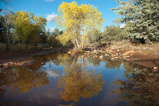 Dry Creek Serenity2 by Curtis Jones