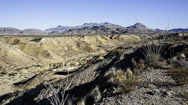 Alan Roberts - Dry River in Big Bend