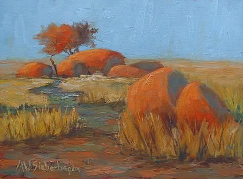 Dry Season by Aurelia Sieberhagen