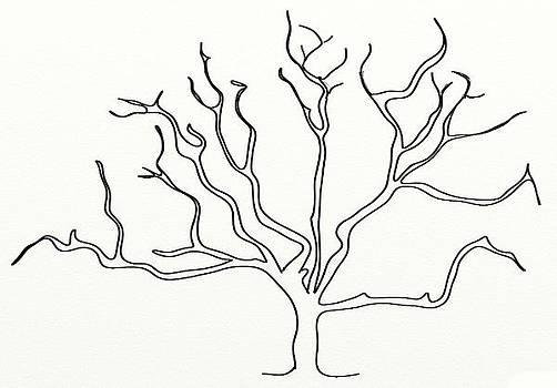 Dry Tree by Shiva G
