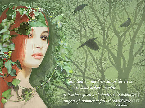 Dryad of the Trees by Maureen Tillman