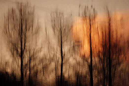 Drying Wet by Lorenzo Cassina