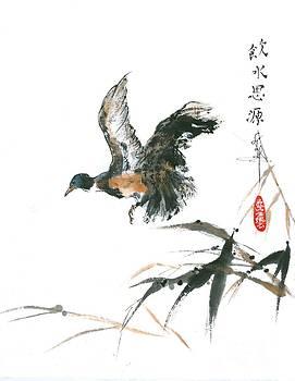 LINDA SMITH - Duck Rising From Marsh