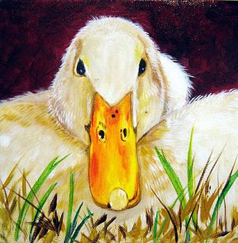Duck by Susan Duxter