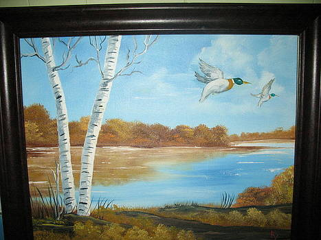 Ducks Flight by Kathy Livermore