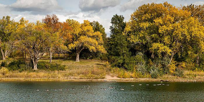 Ducks on a Lake in Fall by Kerri Garrison