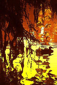 Amy Vangsgard - Ducks on Red Lake A
