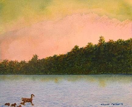 Ducks on the Lake by Sharon Farber