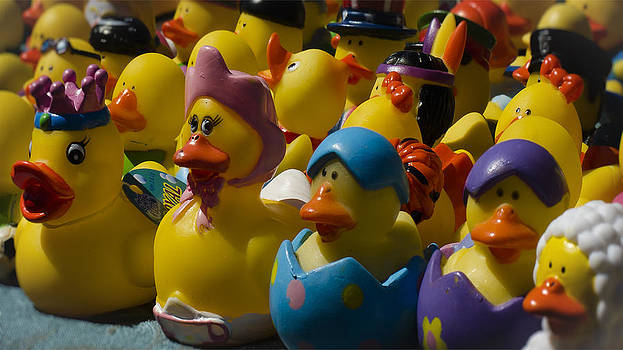 Ducky's by Joie Cameron-Brown