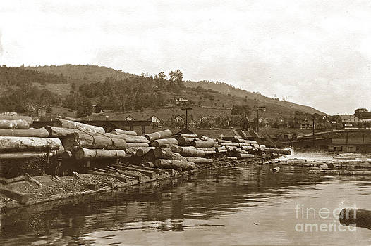 California Views Mr Pat Hathaway Archives - Dumping logs into the mill pond circa 1910