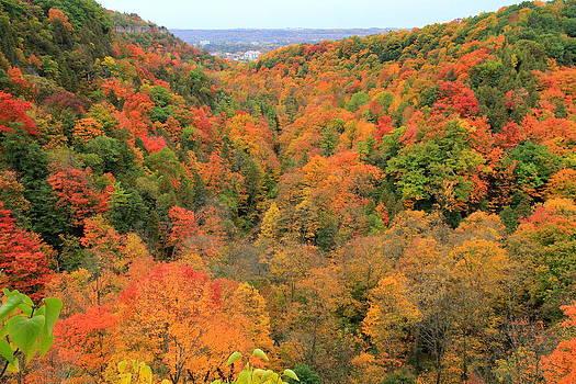 Dundas Peak during Fall by Philip Neelamegam