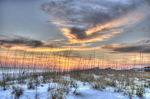 Dune grass by Jim Wright