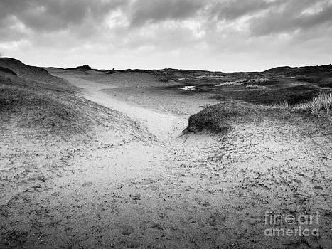 Dune Valley by David Hanlon