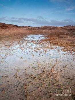 Dune Valley Pool by David Hanlon