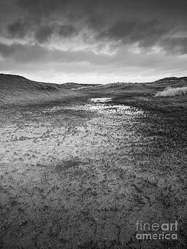 Dune Valley Pools by David Hanlon