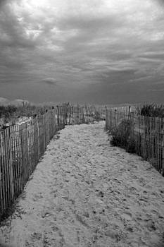 Carolyn Stagger Cokley - Dune Walk 758 bw
