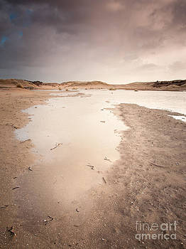 Dune Wetlands In Winter by David Hanlon