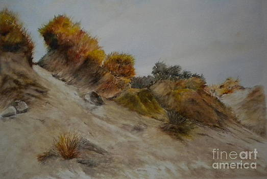 Dunes at Solymar I by Madie Horne