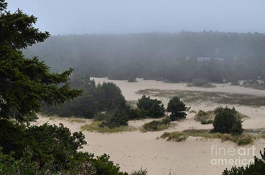 Dunes in the Fog by Shauna Fackler