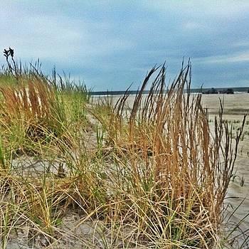 #dunes #jeeps #jeepjk #beach #newjersey by Matthew Loving