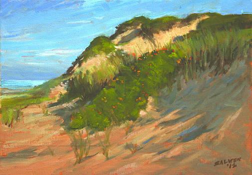 Dunes near Cape Cod National Seashore by Peter Salwen