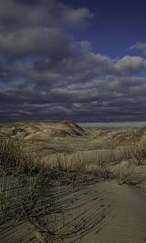 Dunes by Nicole Robinson