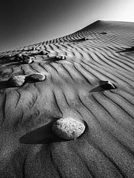 Dunes of Maspalomas by Neil Buchan-Grant