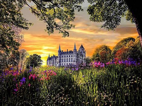 Dunrobin Castle by Alex Hardie