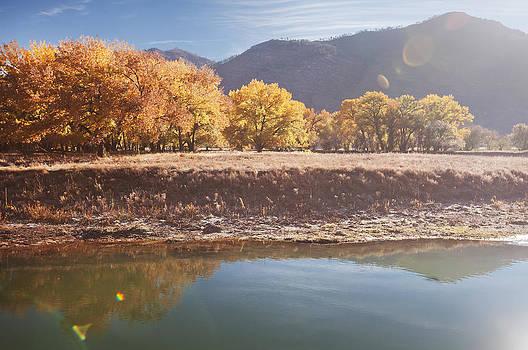 Durango's Fall by D Scott Clark