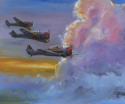 Dusk Flight by Christopher Jenkins