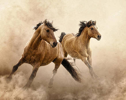 Dust Dance by Ron  McGinnis