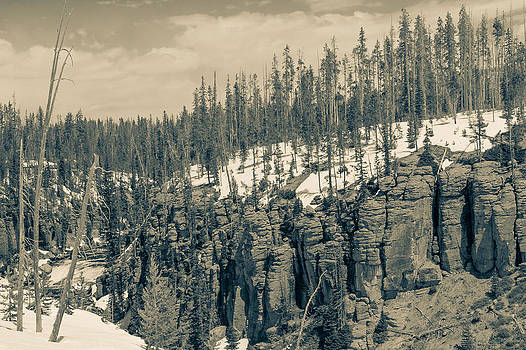 Yellowstone in the snow by Pro Shutterblade