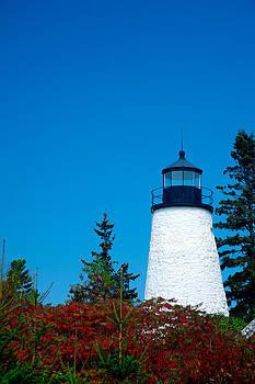 Dyce Head Lighthouse by David Smith