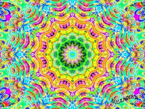 Dye Tyed by Bobby Hammerstone