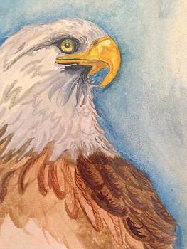Eagle by  Lady  Ann