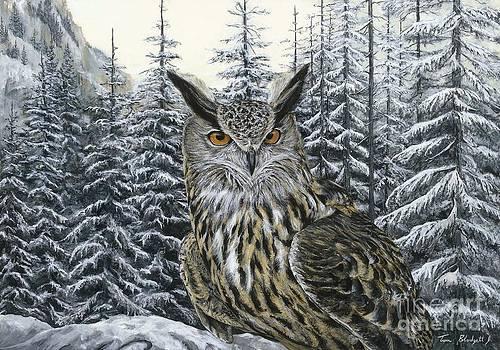 Eagle Owl by Tom Blodgett Jr