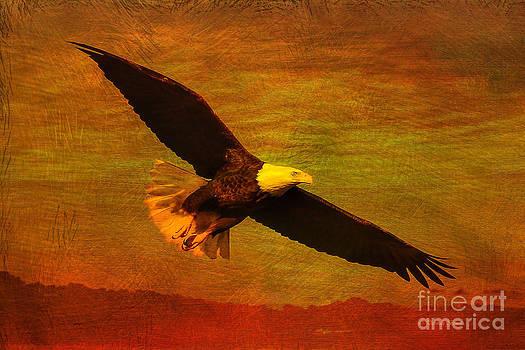Deborah Benoit - Eagle Spirit