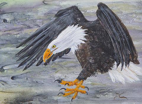 Dee Carpenter - Eagle Study 2