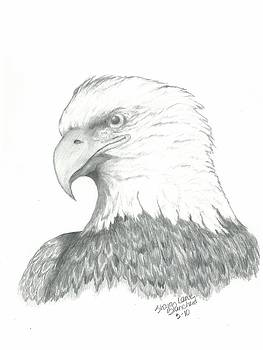 Eagle Symbol of Freedom by Sharon Blanchard