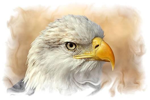 Marty Koch - Eagle6