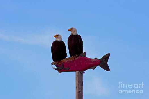 Eagles by Deanna Proffitt