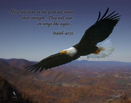 Eagles Wings by Shane Garrett