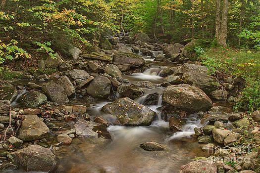 Charles Kozierok - Early Autumn Flow