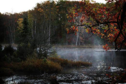 Scott Hovind - Early Autumn Morning
