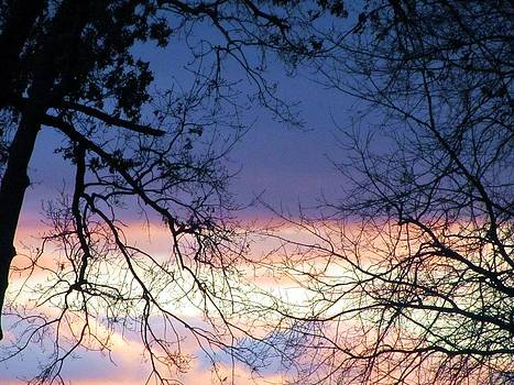 Susan Carella - Early December - Sunset
