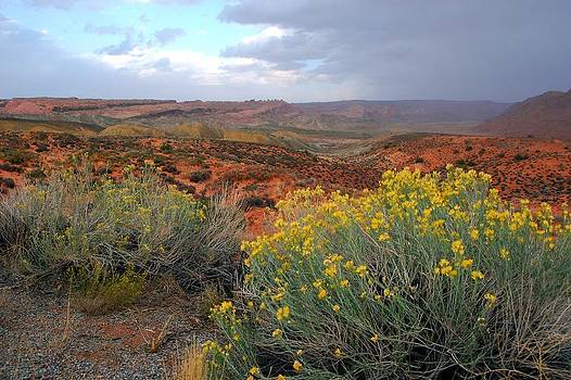 Early Evening Landscape at Arches National Park by Cascade Colors